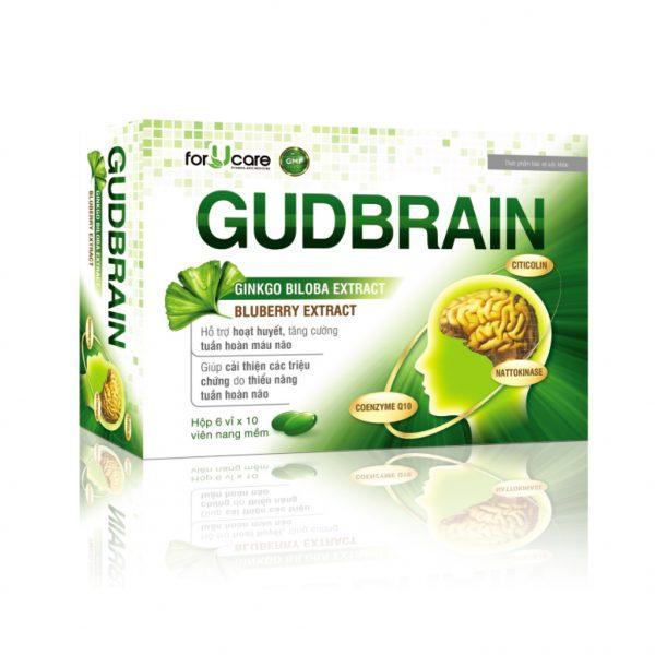 Gubbrain